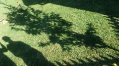 Landscape gardening (ordinary) lawn