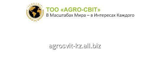 buldozer_xcmg_ty160