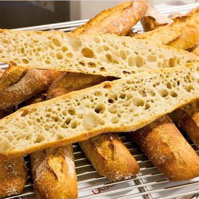 fermentator_dlya_zakvasok_tradilevain_jac_franciya