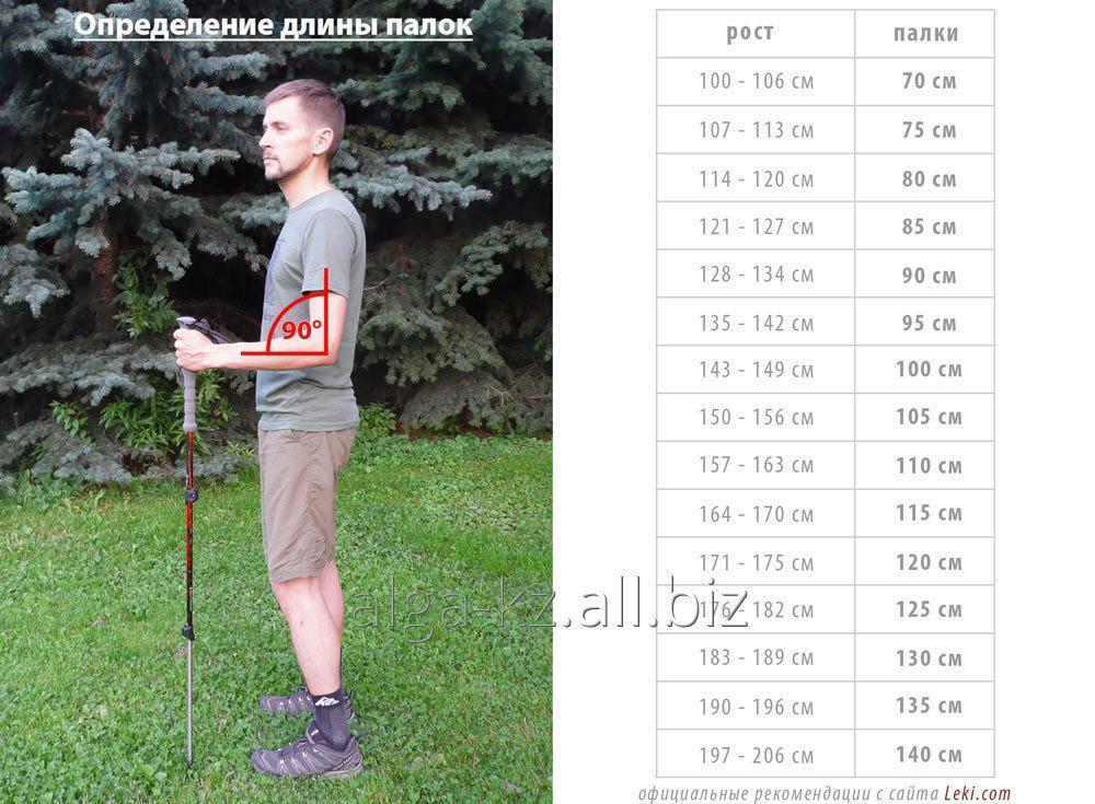 palki_dlya_skandinavskoj_hodby_teleskopicheskie