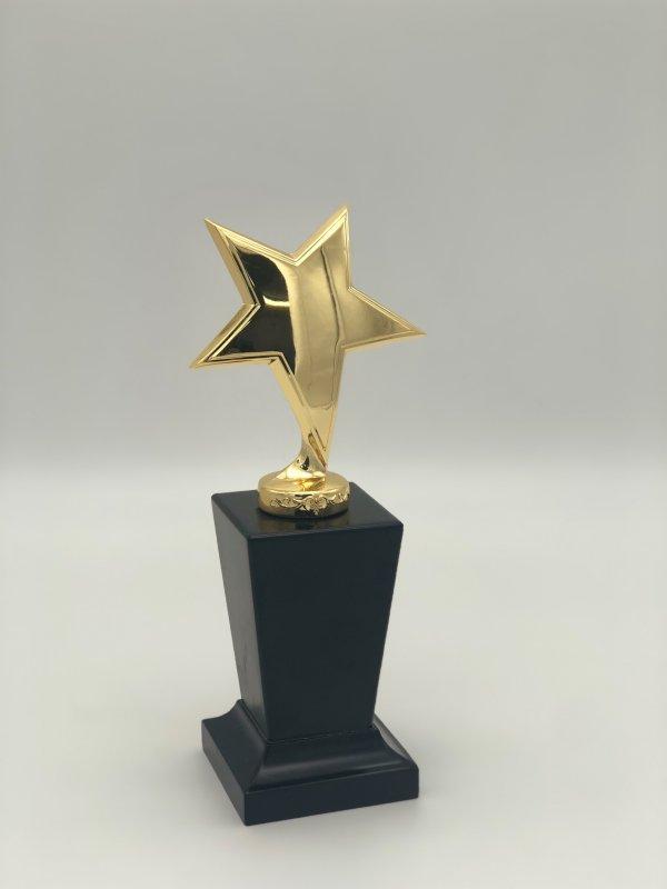 statuetka-zvezda-za-002
