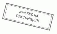 mineralnyj_korm_in_r_lekmin_rind
