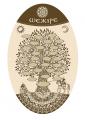 Шежире (родословное древо казахов)