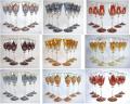 Бокалы для вина, эксклюзивное цветное чешское стекло
