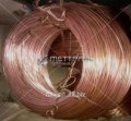 A wire brass Л on 1 Gost 26366-84, 05kp steel, 08, 10, 15, 20