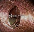 El alambre de cobre 6 kreshernaya por el GOST 4752-79, la marca М0б, el arte. 50527120