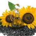 Ziarno słonecznika (oleiste gatunki)