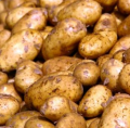 Potatoes Commodity