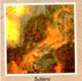 Оникс Sultano