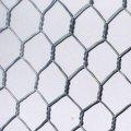Сетка крученая оцинкованная ГОСТ 13603-89 100 0.60 2500