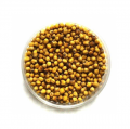 Cây dầu bắp cải Brassica napus