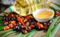 Пальмовое масло 99% Малайзия