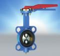 Затвор дисковый литой запорно-регулирующий ЗД 32