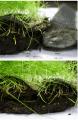 Биомат для укрепления грунта Арнит-Н