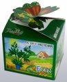 Бобы Азбука растений Bontiland наборы для выращивания, (411678)