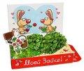 Моей Зайке Живая открытка Happy Plant наборы для выращивания