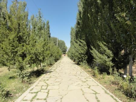 Туркестан Элит Тур, ТОО