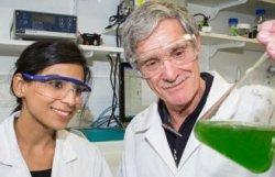 В Австралии ученые создают топливо будущего
