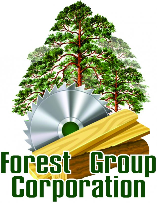 Forest Group Corporation, ТОО, Шымкент