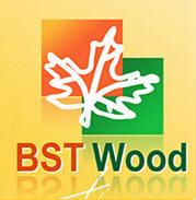 BST Wood (БСТ ВУД), ТОО, Боралдай