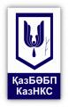 """ТОО """"Каз НКС"""""""