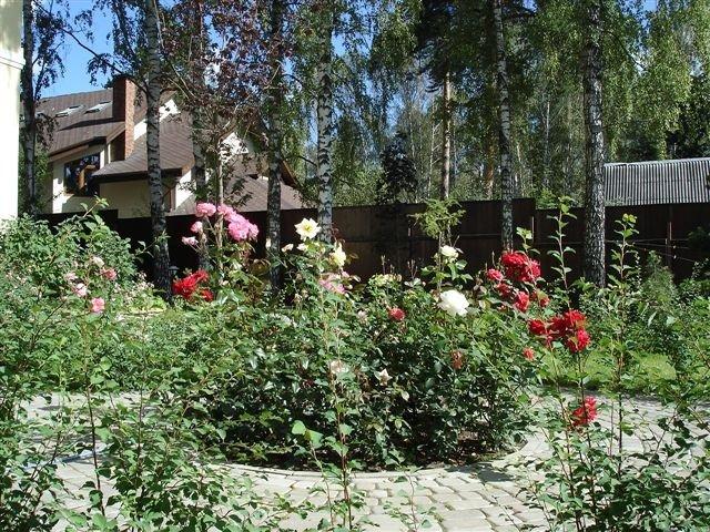 Благоустройство территории озеленение сада в Алматы и области