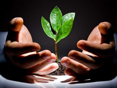Заказать Комплексный анализ тенденций развития и проблем отрасли