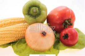 Order Services of examination and certification of food in Kostanay