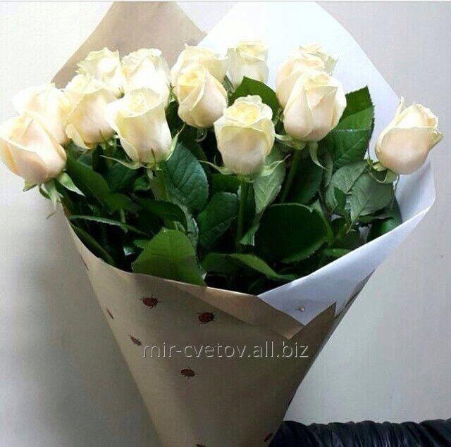 Доставка цветов казахстан оптом купить срезанные цветы