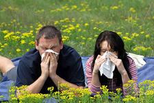 Заказать Лечение аллергических заболеваний