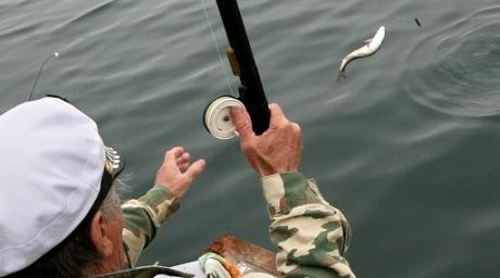 Заказать Рыбалка в Казахстане на озере Балхаш