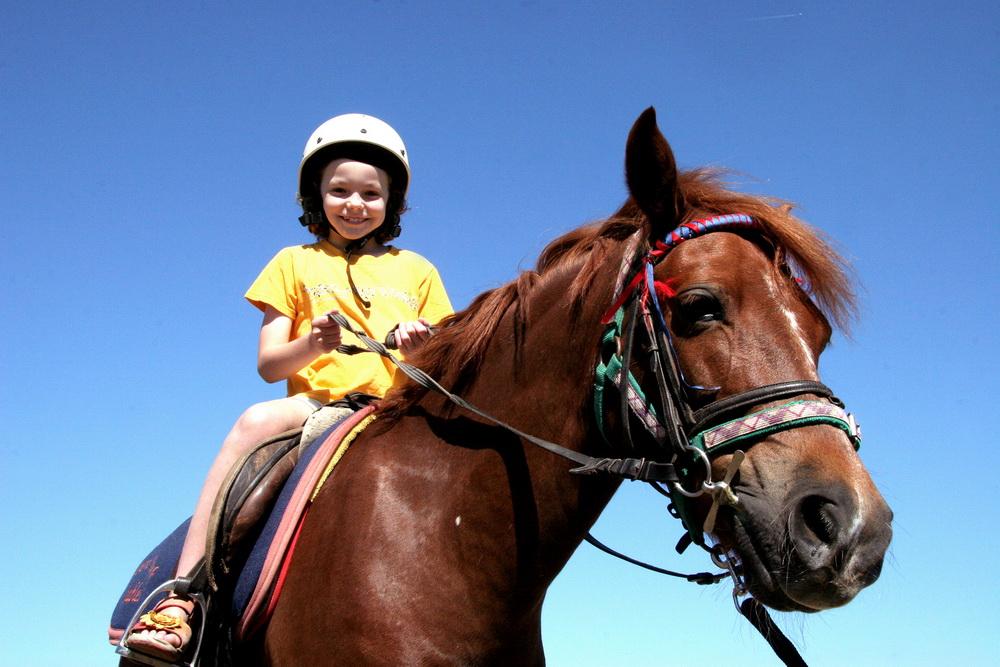 Заказать Катание на лошадях, конные прогулки