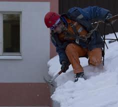 Order Cleaning of a roof of roofs of snow and fros