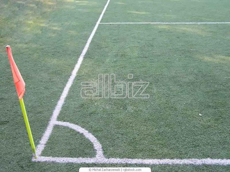 Заказать Разметка спортивных площадок, учебных и детских площадок
