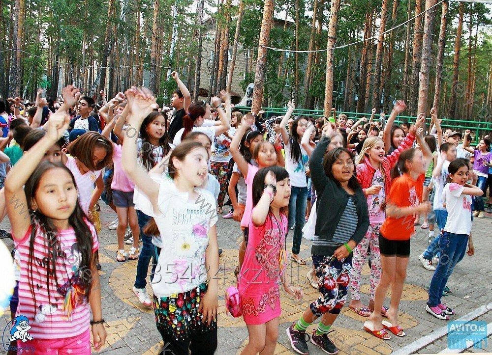 Заказать Детский летний лагерь в Боровом