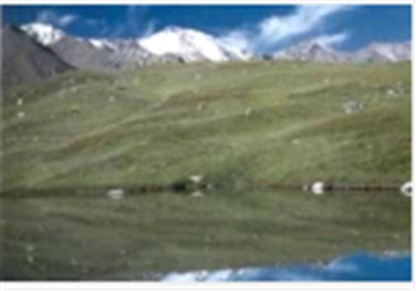 Заказать Тур по Казахстану Природный парк Иле-Алатау