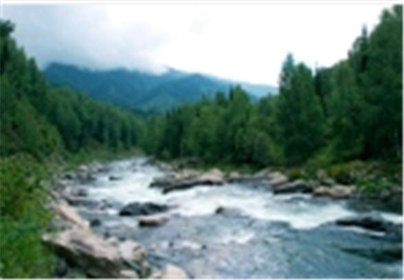 Заказать Приключенческий тур по Казахстану Тургеньское ущелье Заилийского Алатау.
