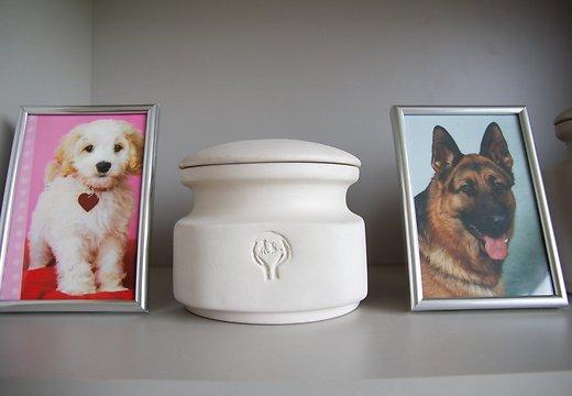 Заказать Кремация домашних животных