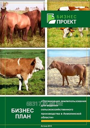 Проект бизнес плана животноводство бизнес планы вывода продукта