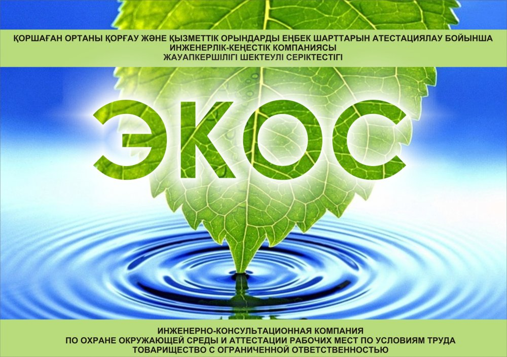 Order Monitoring of emissions of the polluting substances in the atmosphere