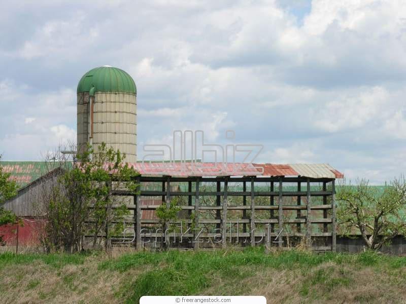 Заказать Монтаж ферм для крупного рогатого скота