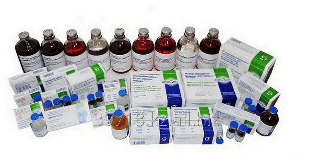 Заказать Услуги лаборатории микробиологии