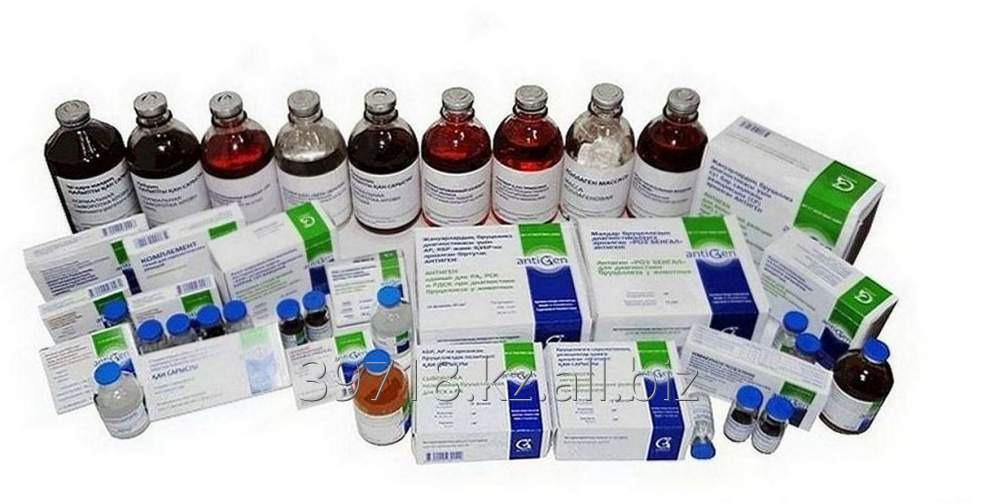 Order Services of laboratory of cellular biotechnology