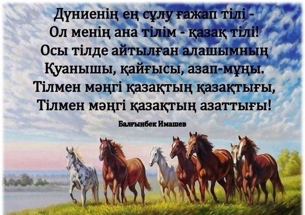 Order Kazakh courses for all