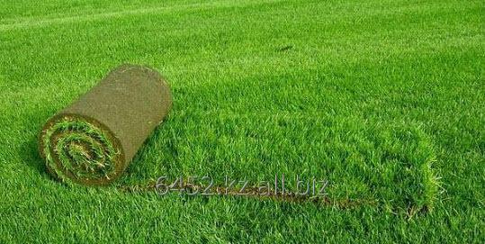 Заказать Укладка и засыпка искусственной травы