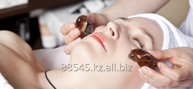 Order Cosmetologycal services
