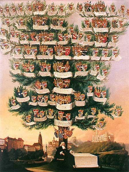 A geneológiai fa ( családfa )