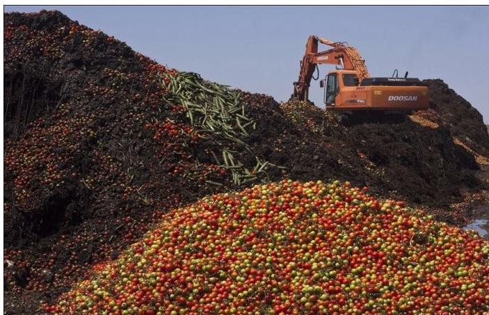 Заказать Утилизация непригодных к реализации пищевых продуктов, утилизация некачественной продукции