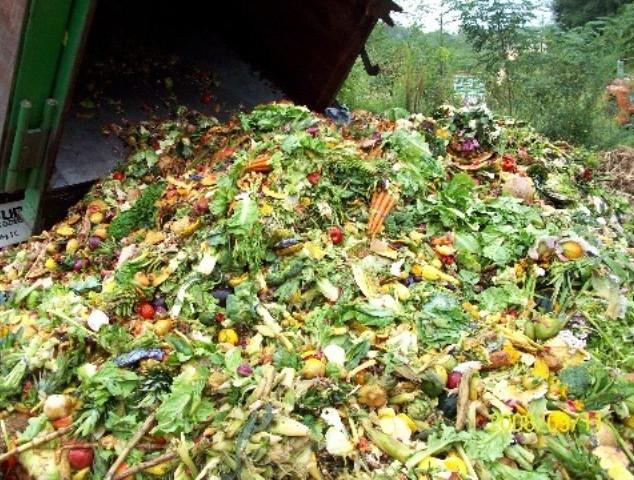 Утилизация пищевых отходов в Казахстане