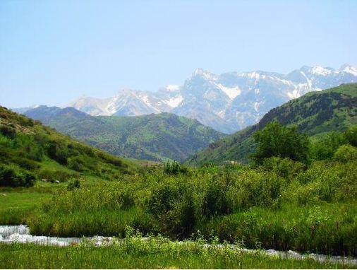 Заказать Тур Сайрам-Угамский Заповедник